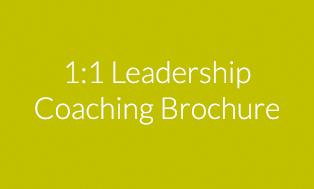 1:1 Leadership